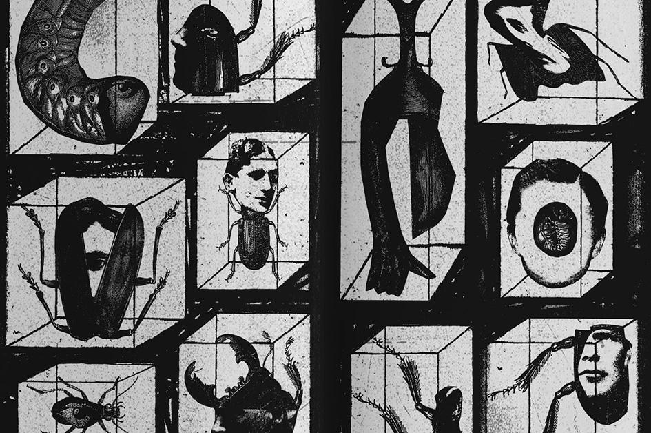 """""""Metamorfoza"""" rivjen nga Primo Shllaku"""